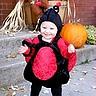 Photo #1 - Ladybug