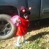 Photo #8 - Ladybug