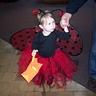 Photo #5 - Ladybug