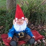 Photo #2 - Happy gnome!