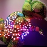 Photo #3 - LED Color Sensing Chameleon