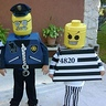Photo #3 - Lego Cop and Robbers