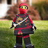 Photo #2 - Lego Ninjago