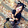 Photo #1 - Leopard Kitty