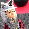 Photo #1 - Lil Bad Wolf