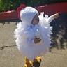 Photo #2 - Lil Chicken