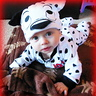 Photo #1 - My Lil Dalmatian
