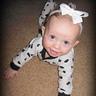 Photo #2 - Lil' Dalmatian