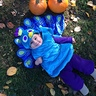 Photo #1 - Our peacock with pumpkins