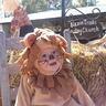 Photo #2 - Lion Baby
