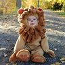 Photo #1 - If lions were this cute they'd be house pets!