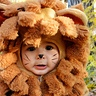 Photo #2 - Lion from Wizard of Oz