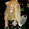 Photo #1 - Cowardly Lioness (Wizard of Oz)