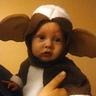 Photo #1 - Baby Gizmo
