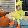 Photo #1 - Little Chicken