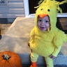 Photo #2 - Little Chicken