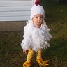 Photo #1 - Little Free Range Chicken