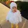 Photo #5 - Little Free Range Chicken