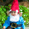 Photo #1 - Little Garden Gnome