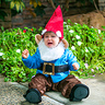 Photo #3 - Little Garden Gnome