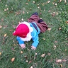 Photo #5 - Gnome Down!