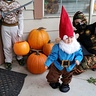 Photo #7 - Little Garden Gnome