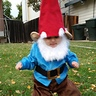 Photo #10 - Little Garden Gnome