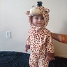 Photo #1 - Little Giraffe