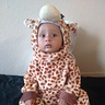 Photo #2 - Little Giraffe is in observing mood