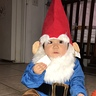 Photo #1 - Little Gnome