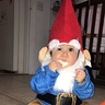 Photo #2 - Little Gnome
