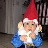 Photo #3 - Little Gnome