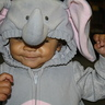 Photo #7 - Little Heffalumps