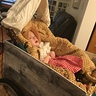 Photo #2 - Mary in her covered wagon