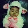 Photo #1 - My little Lamb