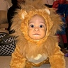 Photo #1 - My Little Lion