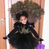 Photo #1 - Little Miss Peacock