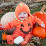 Photo #1 - Little Pumpkin & Lion