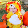 Photo #3 - Little Pumpkin & Lion