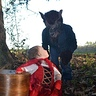 Photo #7 - Little Red Riding Hood and The Big Bad Wolf