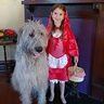Photo #5 - Little Red Riding Hood and The Big Bad Wolf