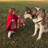 Photo #3 - Little Red Riding Hood and the Big Bad Wolf