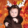 Photo #1 - Little Moose/Reindeer