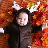 Photo #2 - Little Reindeer