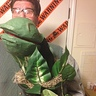 Photo #2 - Audrey 2