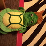 Photo #3 - Little Turtle