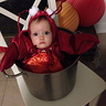 Photo #2 - Lobster in a Pot