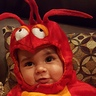Photo #4 - Luciano the Lobster