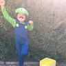 Photo #1 - Luigi