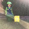 Photo #2 - Luigi